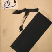 T i franja negra, 2004