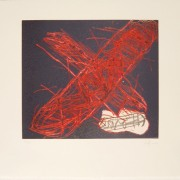 X vermella, 2004