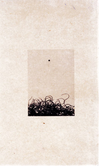 5.plensacal